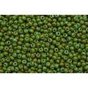 Miçanga Preciosa Verde Escuro Mesclado 5/0 (69130)