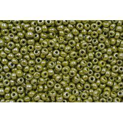 Miçanga Preciosa Verde Musgo Perolado 5/0 (83113)